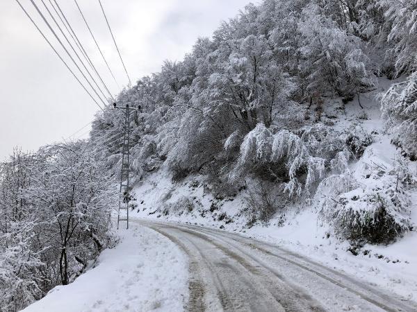 Zonguldak'ta 29 köy yolu ulaşıma kapandı