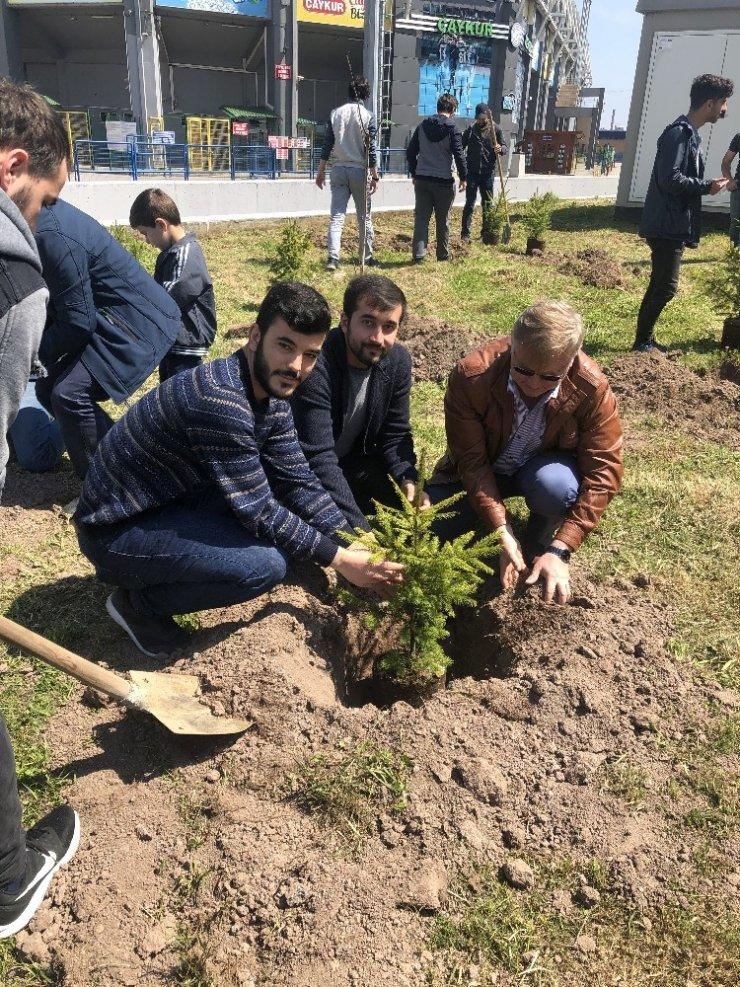 Rize'de üniversite öğrencileri fidan dikti