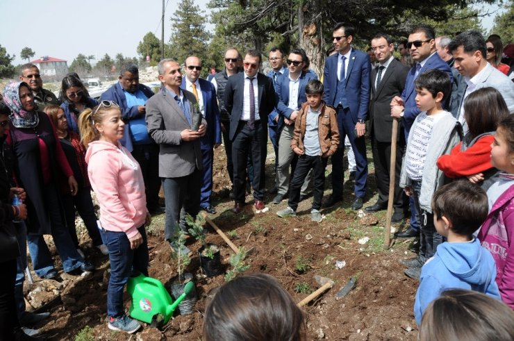 Erdemli'de Adalet Ormanı kuruldu
