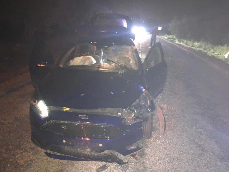 Otomobil yola çıkan ineğe çarptı: 1 yaralı