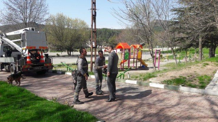 Tosya Belediyesi, mesire alanlarında bakıma çalışmalarını sürdürüyor