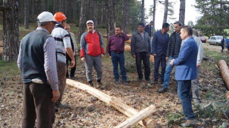 Vali Toraman Emet'te ormancılık faaliyetlerini inceledi
