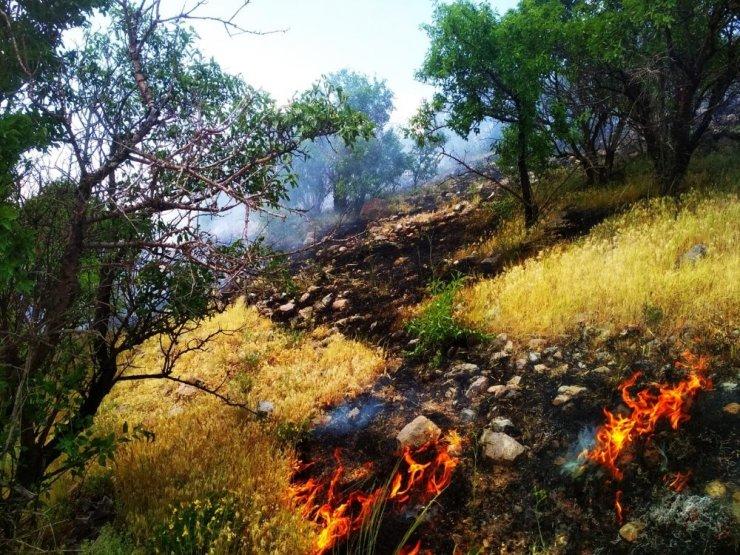 Pasinler'de yangın korkuttu ile ilgili görsel sonucu
