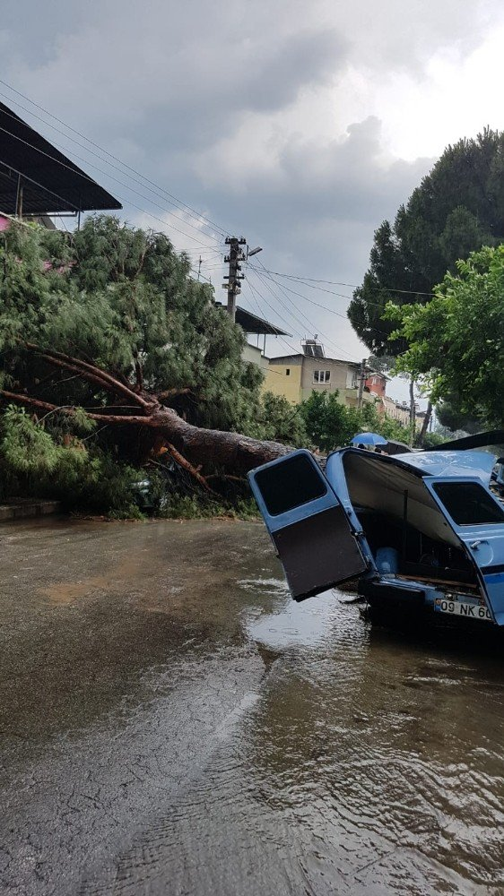 Aydın'ın Nazilli ilçesinde akşam saatlerinde başlayan sağanak yağış ve fırtına sonucu şehirde yaşam felç oldu. ile ilgili görsel sonucu