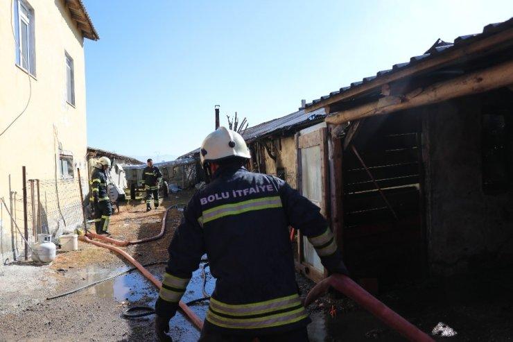Bolu'da, hindi kümesinde yangın