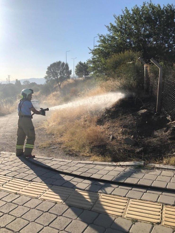 Burhaniye'de ot yangını korkuya neden oldu