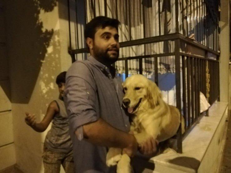 Demir parmaklıklara sıkışan köpek kurtarıldı