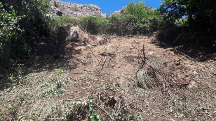 Artvin'de toprak kaymasında 20 hayvan toprak altında kaldı
