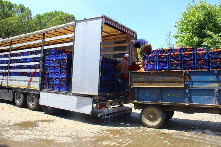 Kas yapmak için değil ekmek kazanmak için her gün 40 ton taşıyorlar