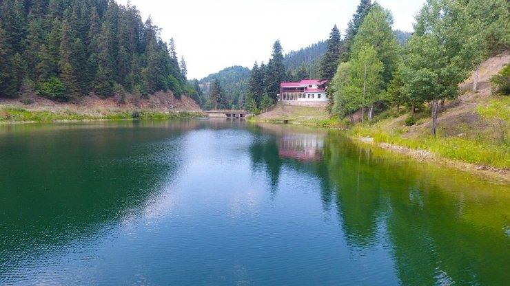 Sinop'ta saklı cennet: Akgöl Tabiat Parkı