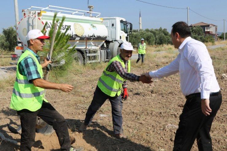 Başkan Dutlulu 'Daha yeşil bir Akhisar' için kolları sıvadı