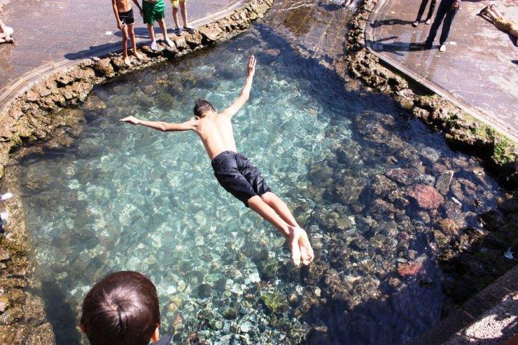 Sıcaklardan bunalan süs havuzlarına koştu