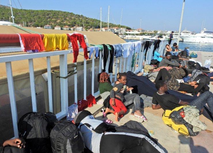 Ölüme yolculuktaki 5 şişme botta 180 göçmen yakalandı