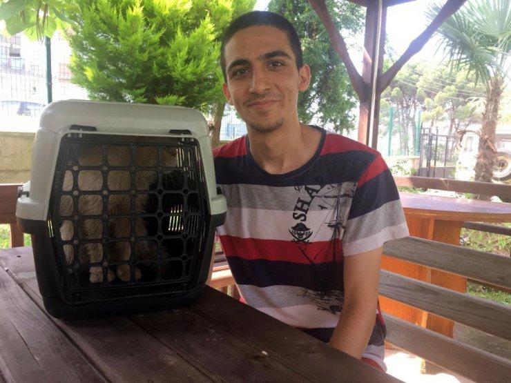 Kedisini kurtarmak için fuel-oil kuyusuna atlayan genç AFAD gönüllüsü oldu
