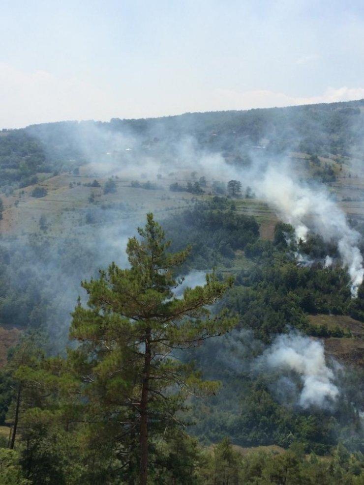 Dikmen'deki orman yangınına helikopterli müdahale
