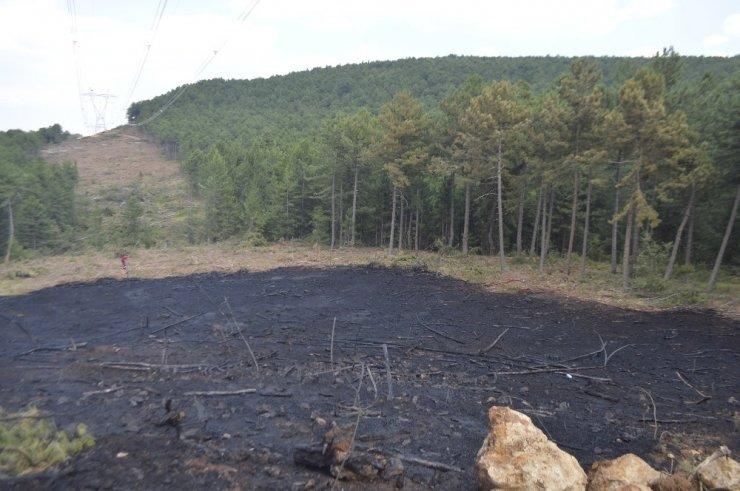 Ormanlık alandaki yangın korkuttu