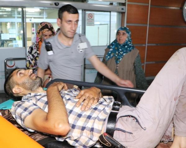 Erzurum'da ayı saldırısı: 1 ölü, 2 yaralı