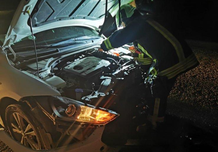 Otomobilin önüne çıkan domuz sürücünün yaralanmasına neden oldu