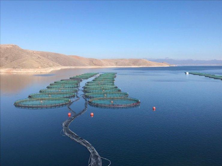 Elazığ'da 'Su Ürünleri' sektörü saha ziyaretleri