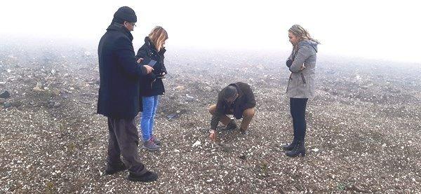 Kütahya'da maden sahası rehabilitasyon çalışmalarıyla fidanlar toprakla buluşuyor