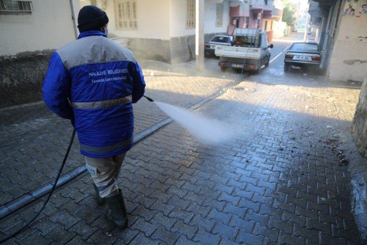 Süleymaniye 'şoklama' sistemi ile temizleniyor