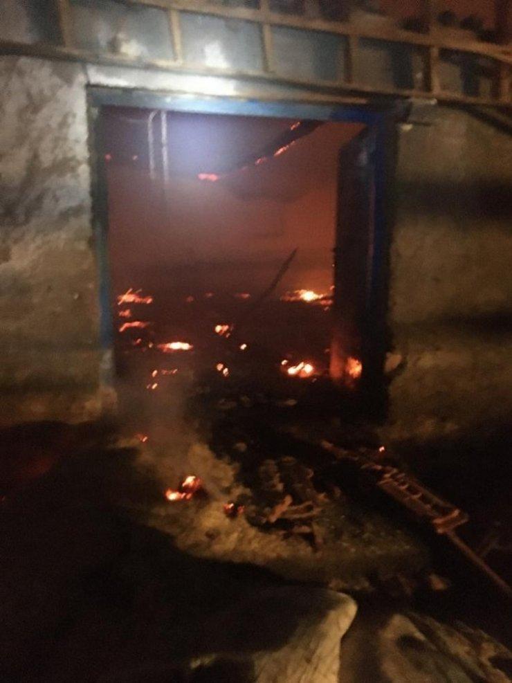 Konya'da ahır yandı, 240 hayvan telef oldu