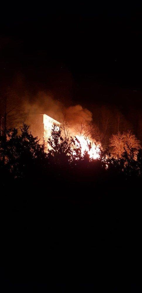 Trabzon ve Giresun'da orman yangınları