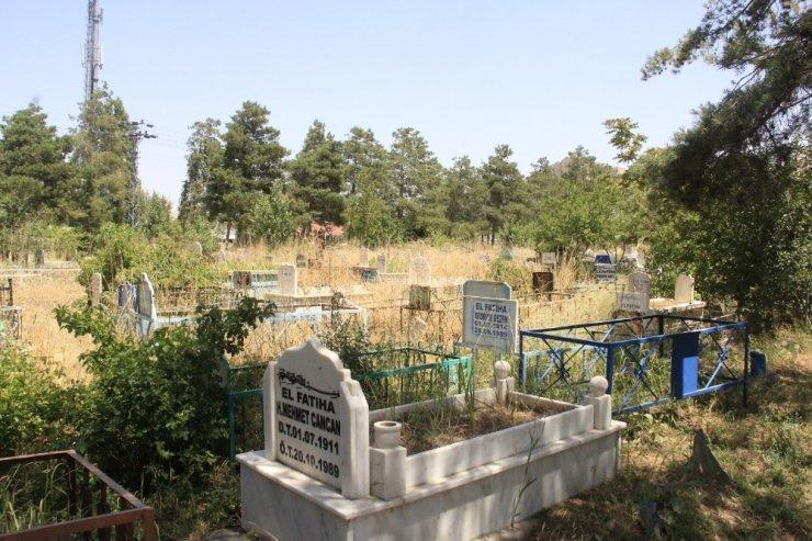Van'da 12 mezarlıktan 6'sı doldu