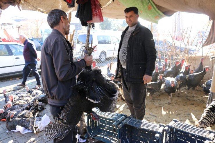 Vatandaşlar yılbaşı hindilerinin fiyatından memnun