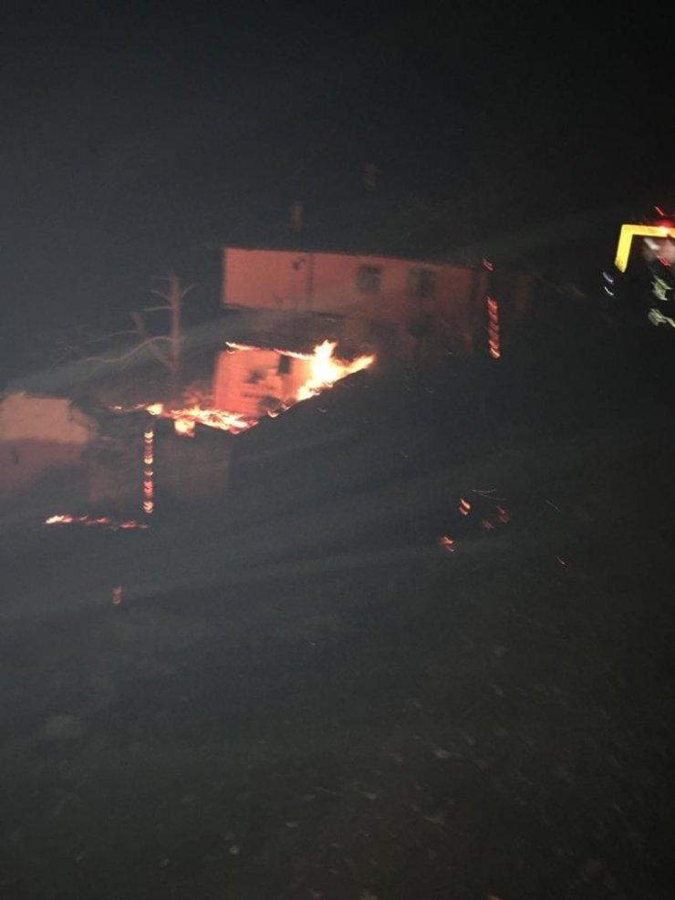 Cide'de çıkan yangında 3 ev ile 1 samanlık kül oldu