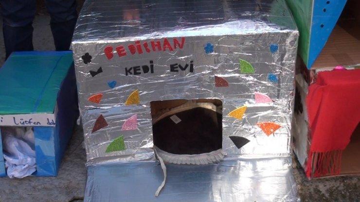 Kediler üşümesin diye 150 adet kedi evi yaptı
