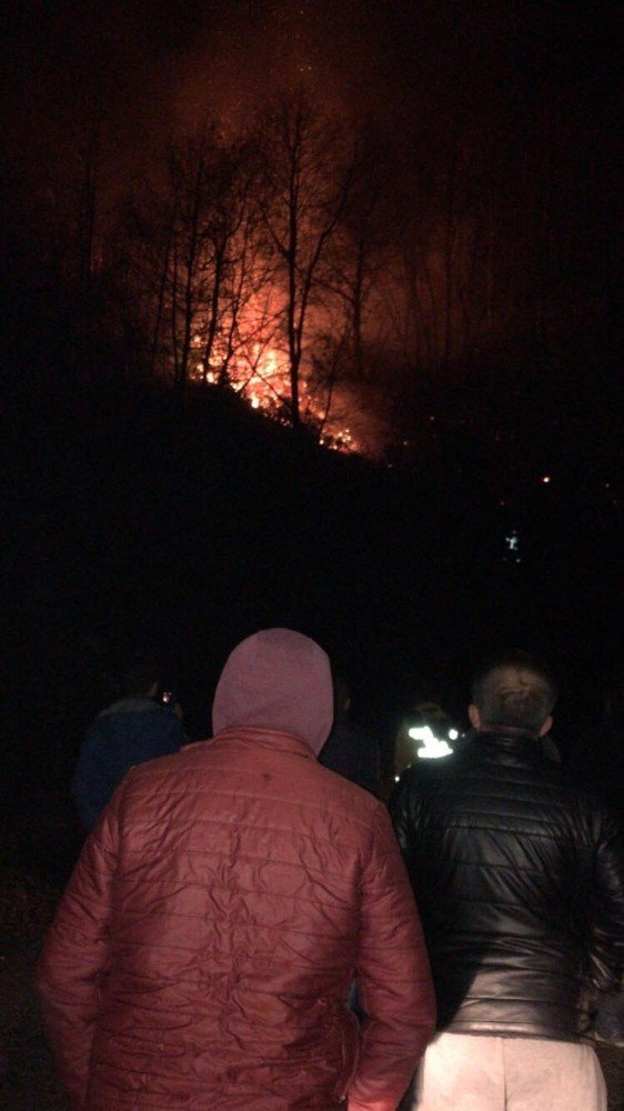 Çatalpınar'da orman yangını
