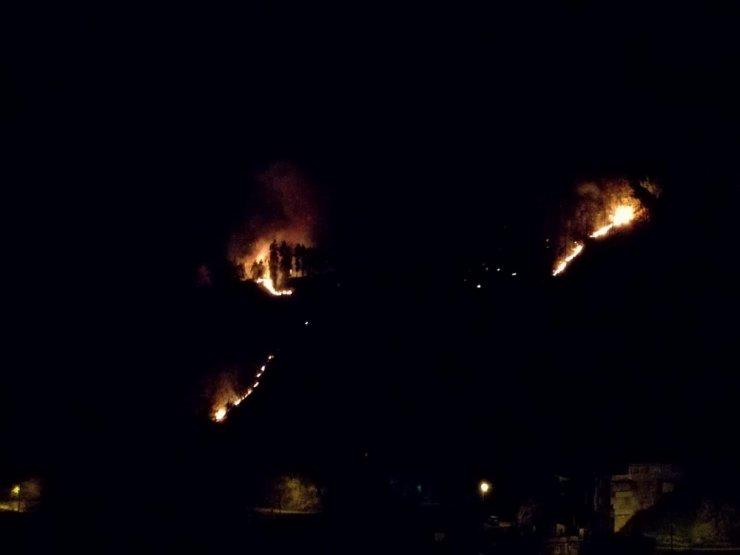 Rize'de 4 ayrı noktada örtü yangını