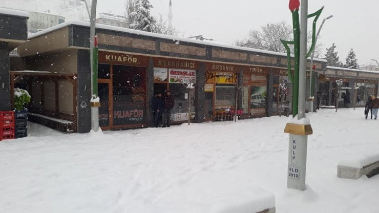 Kulp'ta kar yağışı hayatı olumsuz etkiledi