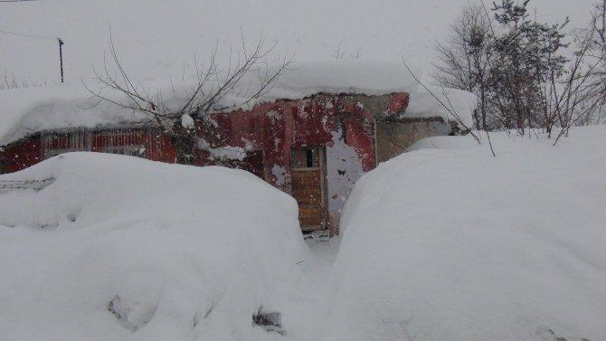 Kar kalınlığı 2,5 metreyi buldu; 257 köy yolu ulaşıma kapalı