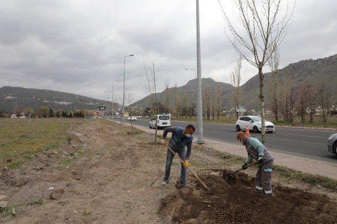 """Başkan Palancıoğlu: """"Vatandaşlar dikilen ağaçlar ile Melikgazili olmanın farkını yaşayacaklar"""""""