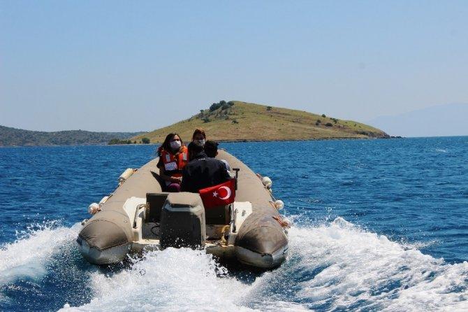'Issız adada köpek var' ihbarı ekipleri seferber etti