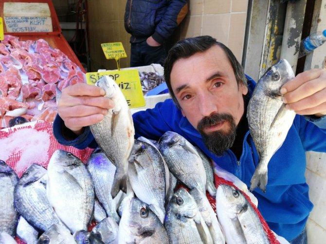 Yasak öncesi kültür balıklarına yoğun ilgi