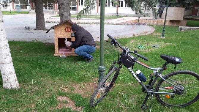 Rektör Çomaklı kampüsteki sokak hayvanlarını unutmadı