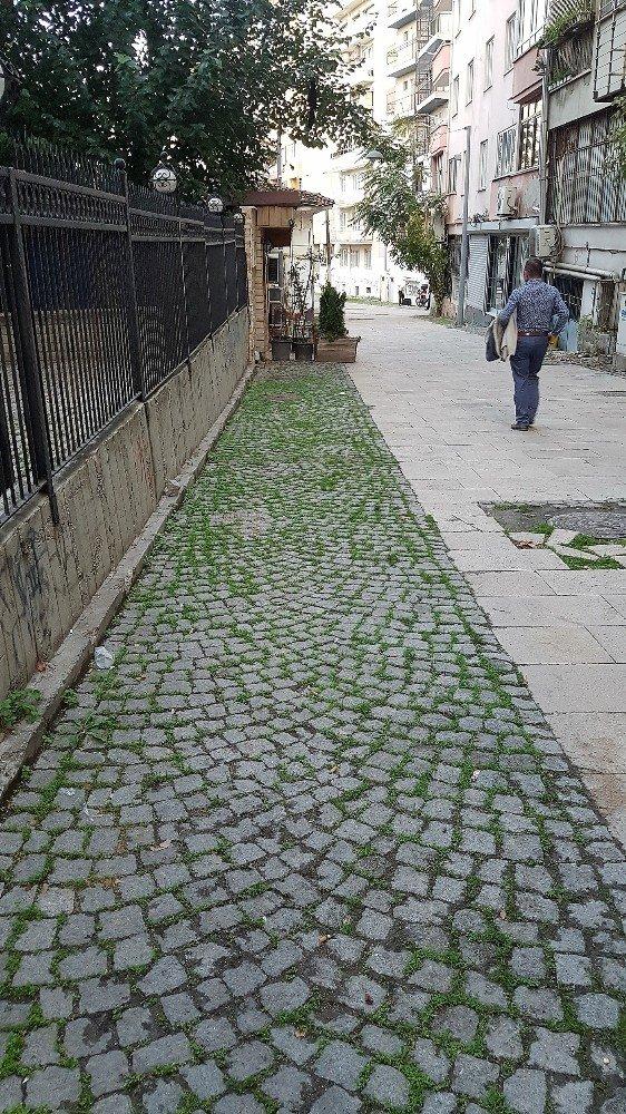 Denizli'nin tarihi değerlerinden Meserret Sokak yenilecek