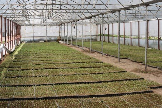 Kocasinan, Türkiye'nin tarım merkezi olacak