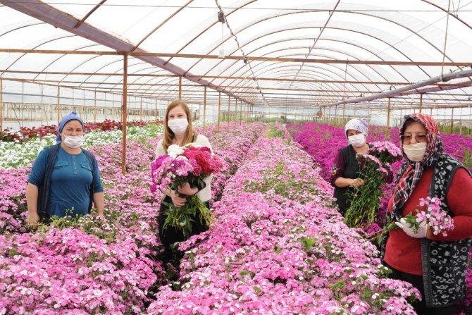 Hem anneler sevinecek hem de çiçek üreticileri