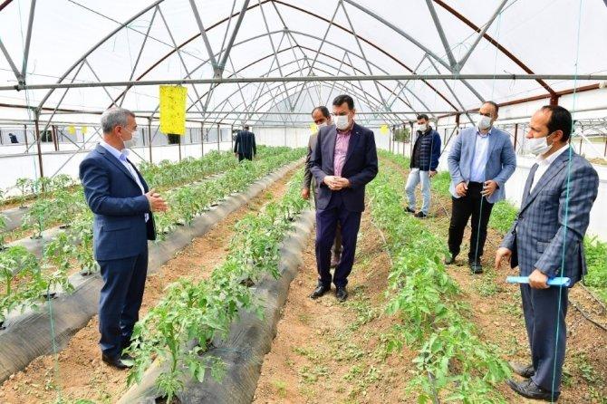 Yeşilyurt'ta Meyve Kurutma ve Kükürtleme Tesisi kurulacak