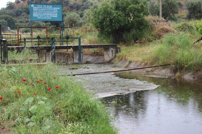 Aydınlı üreticiler, Büyük Menderes'ten su verilen kanaldaki kirliliğe bir çözüm bulunmasını istiyor