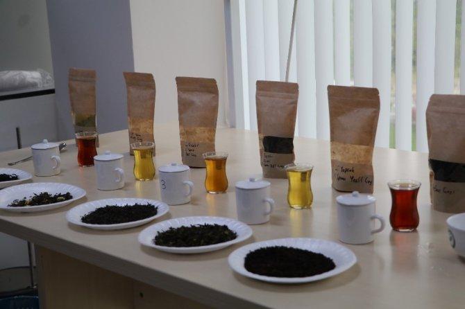 İmparatorların Çayı 'Beyaz Çay' tahtını 'Ballı Altın Çay'a kaptırdı