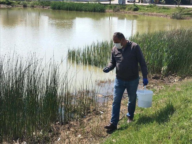 Ergene Belediyesi larva ile mücadele çalışmalarını arttırdı