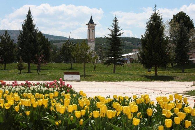 Öğrencisiz kampüste bahar manzaraları