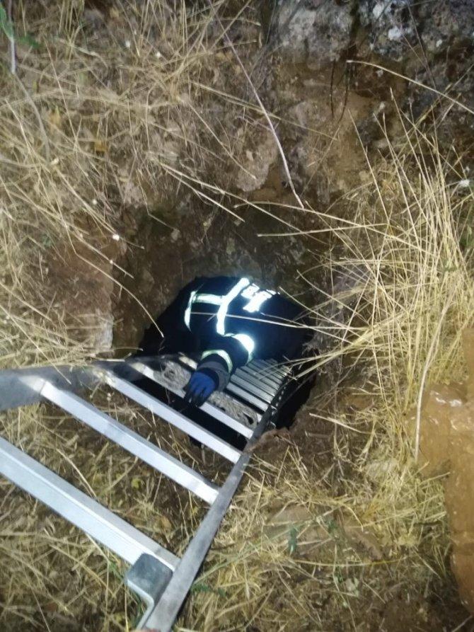 2 gün önce kaybolan köpek su kuyusunda bulundu