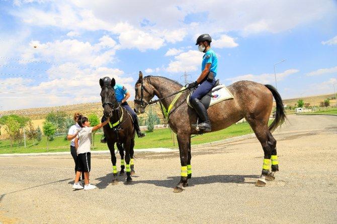 Deprem bölgesi Elazığ'da, atlı jandarmalar moral görevine başladı