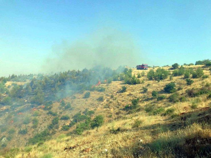 Gaziantep'te orman yangını: 2 hektar alan zarar gördü